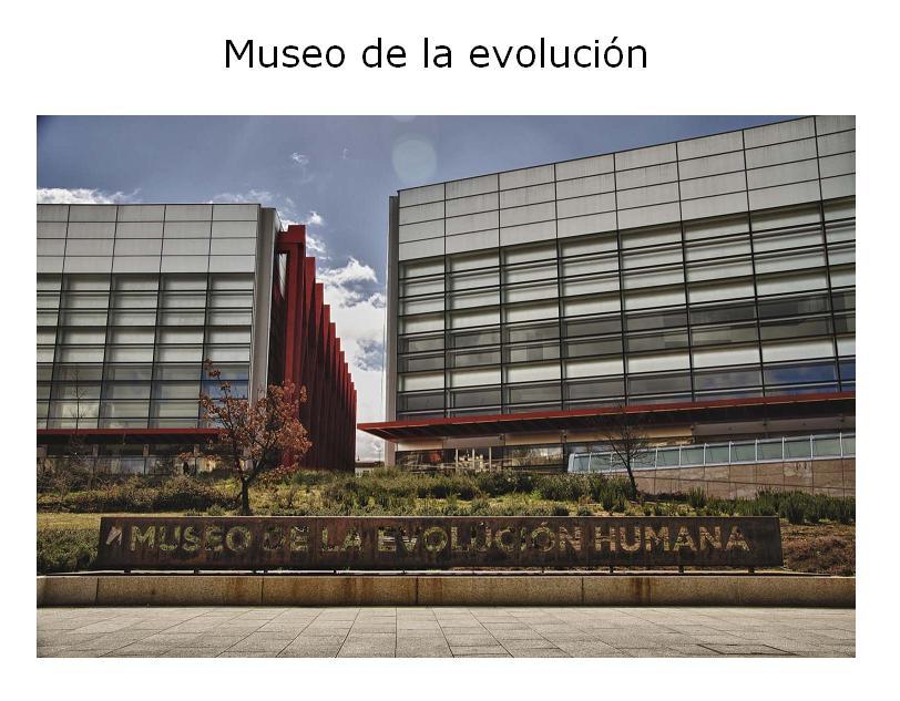 Museo-evolucion